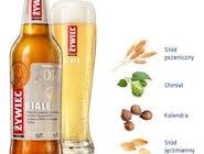 Piwo Żywiec Bezalkoholowy