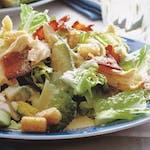 Cézar šalát so zeleninkou a gril.kuracím mäsom, dressing, posúch/bagetka