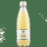 Bad Brambacher - Zahradní pomerančová limonáda - bez Éček a konzervantů