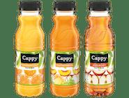 Cappy 0,5l