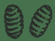 8. Gnocchi z ragu jagnięcym