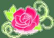 Róża Bar Kraków - Kanapki, Naleśniki, Pierogi, Sałatki, Zupy, Kuchnia tradycyjna i polska, Obiady, Dania wegetariańskie, Śniadania, Kawa, Ciasta - Kraków