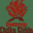 Restauracja Dzika Róża - Pizza, Makarony, Naleśniki, Pierogi, Sałatki, Zupy, Desery, Kuchnia tradycyjna i polska, Obiady, Dania wegetariańskie, Kawa, Lody, Kuchnia Włoska - Racibórz
