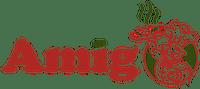 Amigo Pizza Oradea